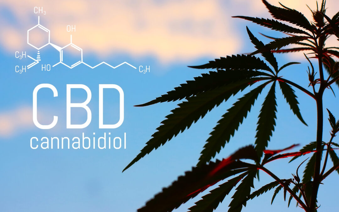 How to Properly & Effectively Dose CBD