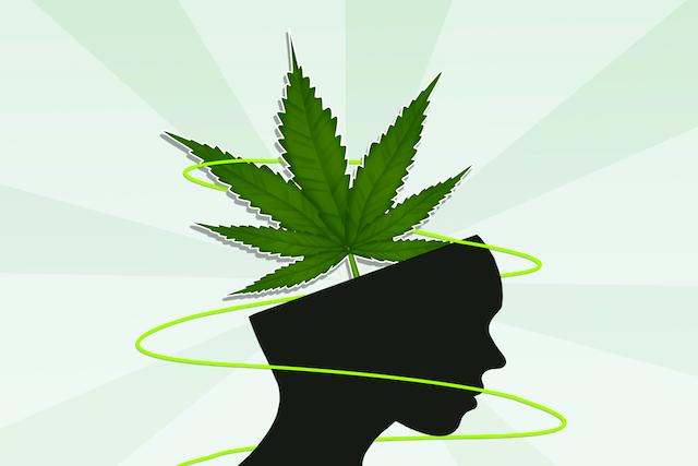 Is Cannabis a Panacea for Fear?